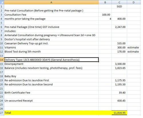 Cost of Pregnancy and Delivery of Baby in SG