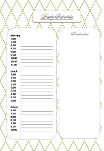 Blog Planner Daily Schedule
