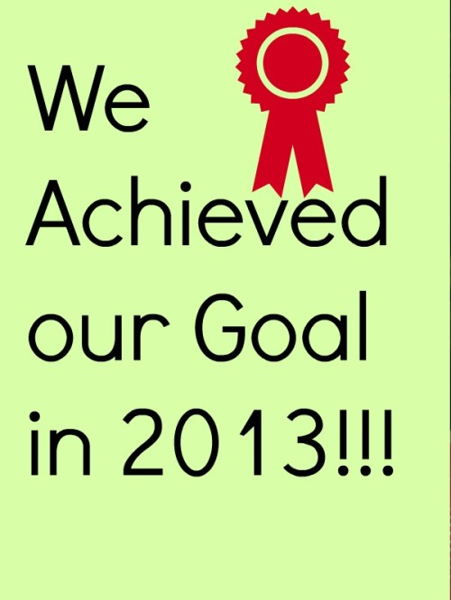 We Achieved our Goal in 2013