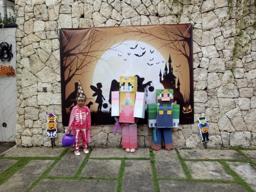 Minecraft Costume Halloween 2016