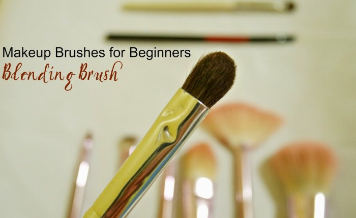 Blending Brush, makeup brushes for beginners