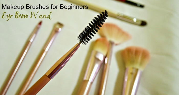 Eye Brow Wand, makeup brushes for beginners